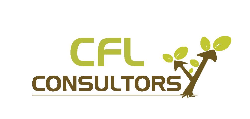 CFL Consultors - Servicios Financieros para Empresas